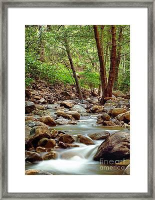 The Creek Framed Print by Marc Bittan