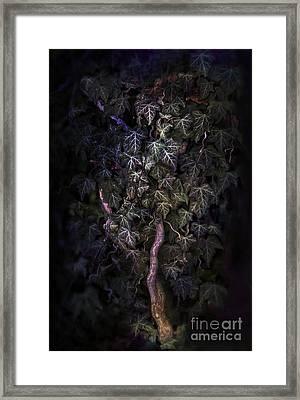 The Dark Side Framed Print by Agnieszka Mlicka