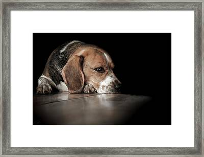The Day Dreamer Framed Print