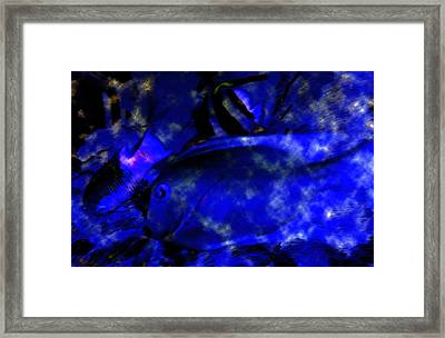 The Deep Blue Sea Framed Print by David Lee Thompson