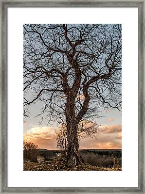 The End Of Another Day Framed Print