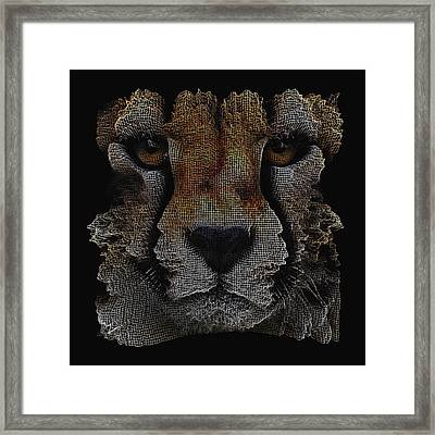 The Face Of A Cheetah Framed Print by ISAW Gallery