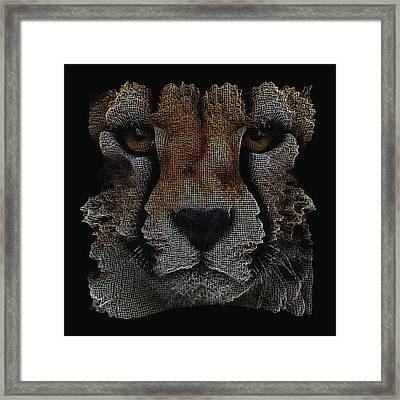 The Face Of A Cheetah Framed Print
