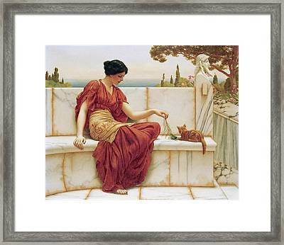 The Favourite Framed Print by John William Godward