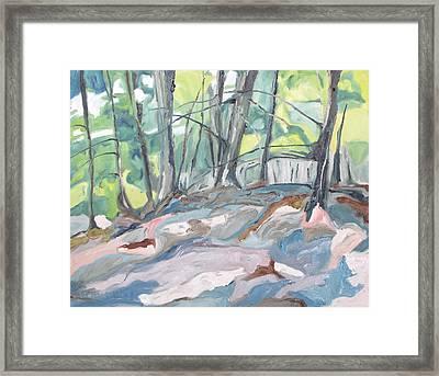 The Forest Floor Framed Print