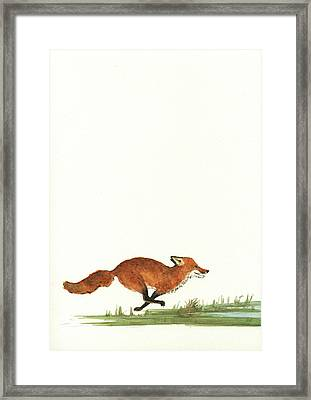The Fox And The Pelicans Framed Print by Juan Bosco