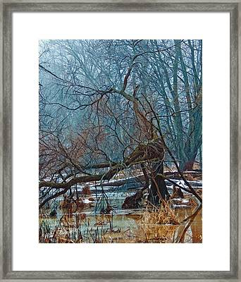 The Gathering Framed Print by Wild Thing