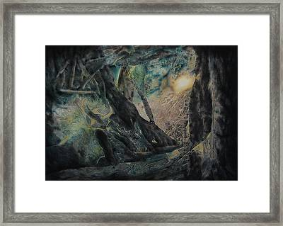 The Glow Will Guide Me Framed Print by Shirley McMahon
