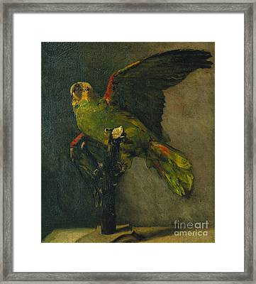 The Green Parrot Framed Print by Vincent Van Gogh