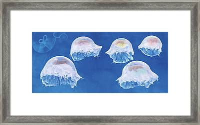 The Jellyfish Nursery Framed Print by Anne Geddes
