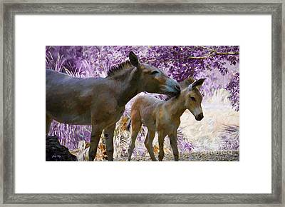 The Kiss Framed Print by Judy Kay