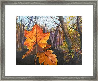The Last Of Autumn Framed Print by Carrie Auwaerter