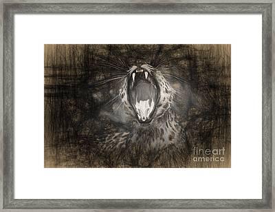 The Leopard's Tongue Rolling Roar IIi Framed Print