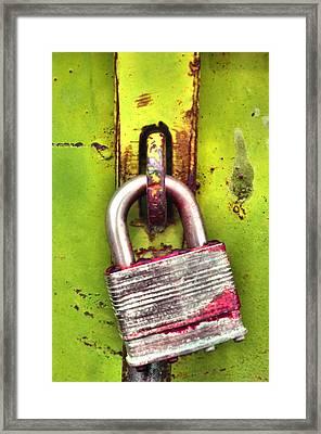 The Lock Framed Print
