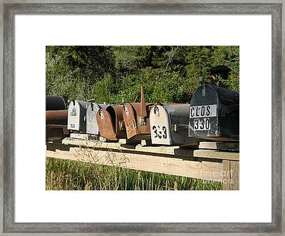 The Long Wait  Framed Print by Diane Greco-Lesser