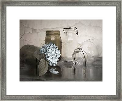 The Looking Glass Framed Print