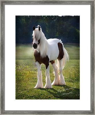 The Lovely Cristal Framed Print