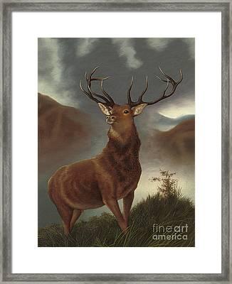 The Monarch Of The Glen Framed Print
