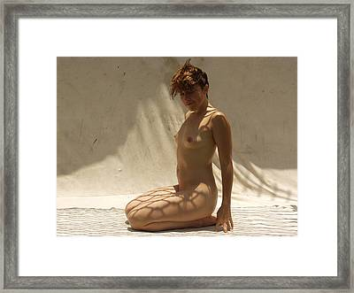 Framed Print featuring the photograph The Net by Lucky Cole