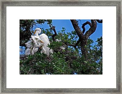 The Nursery Framed Print