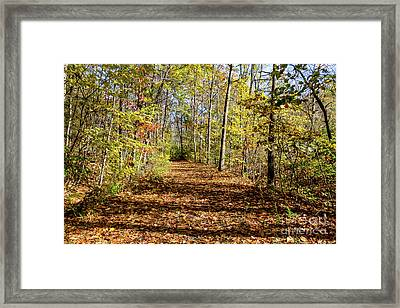 The Outlet Trail Framed Print