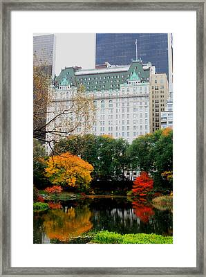 The Park And The Plaza Framed Print by Christopher Kirby