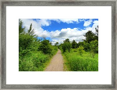 Framed Print featuring the photograph The Path Ahead by Anthony Rego