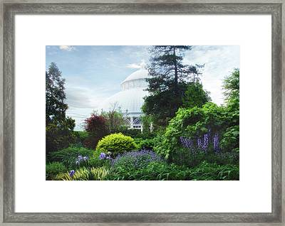 The Perennial Garden Framed Print by Jessica Jenney