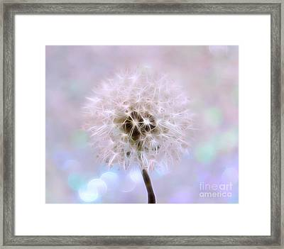 The Perfect Wish Framed Print