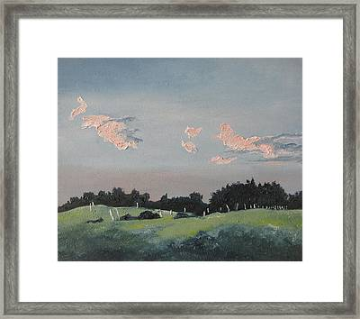 The Pink Clouds Framed Print by Francois Fournier