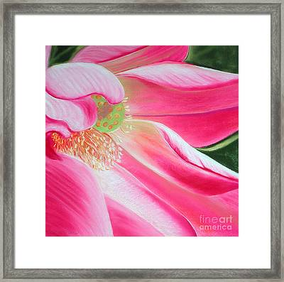 The Pink Framed Print by Lucinda  Hansen