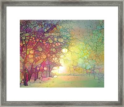 The Quiet Moment Before Snow Touches Ground Framed Print