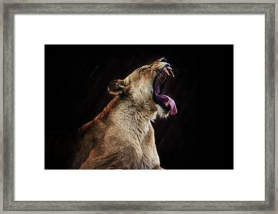 The Roar Framed Print by Martin Newman