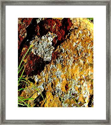 Framed Print featuring the photograph The Rock by Lenore Senior