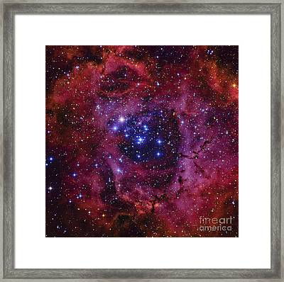 The Rosette Nebula Framed Print by Roberto Colombari