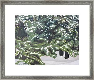 The Snow Over The Spruce Trees  Framed Print