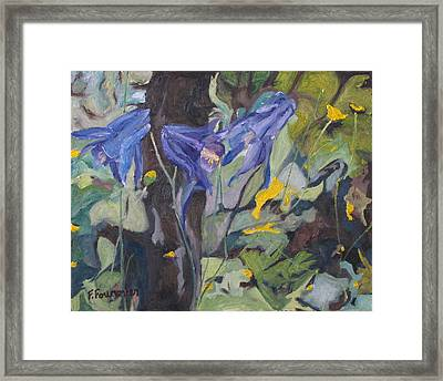 The Three Columbines  Framed Print by Francois Fournier