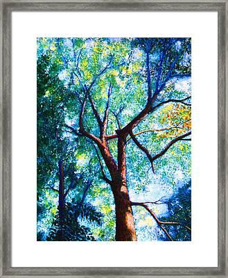 The Tree Framed Print by Stan Hamilton