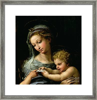 The Virgin Of The Rose Framed Print