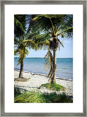 The Waters Edge Framed Print