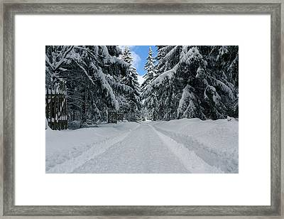 The Way Into The Winter Framed Print by Andreas Levi