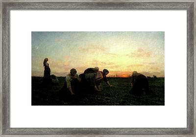 The Weeders Framed Print by Jules Breton