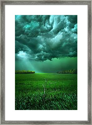 There Came A Wind Framed Print by Phil Koch