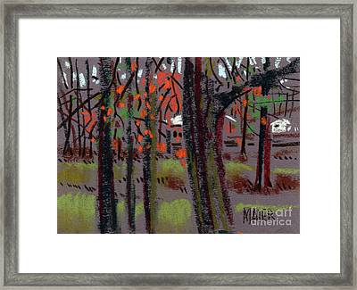 Thru The Trees Framed Print by Donald Maier