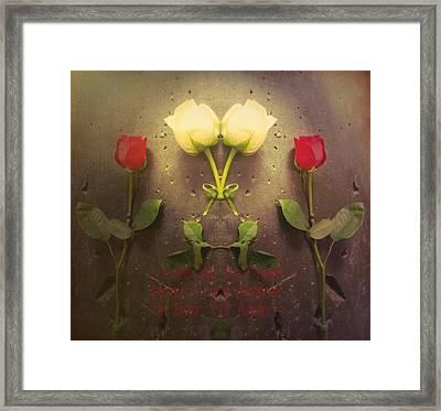 Ties That Bind Framed Print by Jim Cook