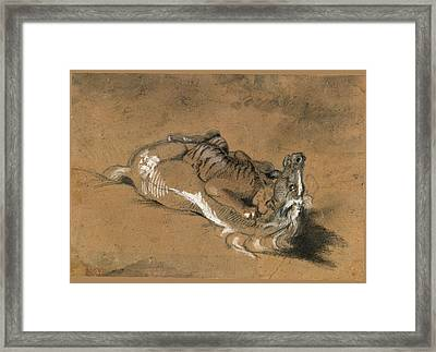 Tiger Attacking A Horse Framed Print by Antoine-Louis Barye