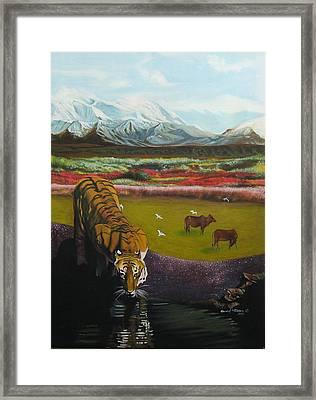 Tiger Framed Print by Howard Stroman