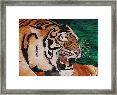 Tiger Paw Framed Print