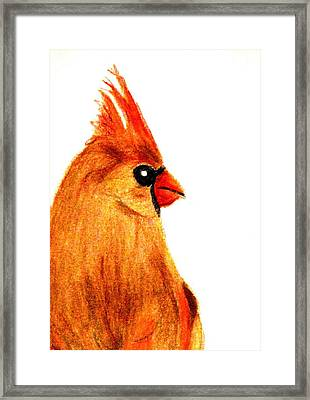 Birds Of A Feather Framed Print by Angela Davies