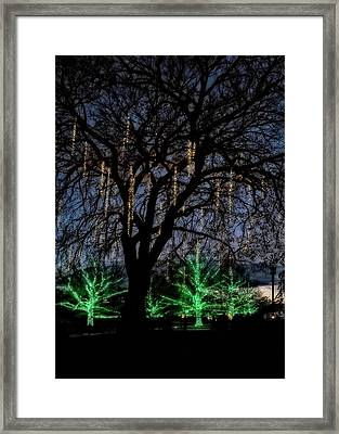 Framed Print featuring the photograph 'tis The Season by Eduard Moldoveanu